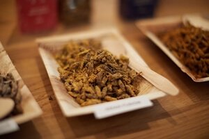 M_Portions-01-02-Party-Bugs-roasted-crickets-(300x200;72pt)_T